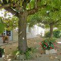 Maison - Villa Vienne 38200 de 11 pieces - 235.000 €