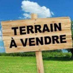Terrain Saint-Pierre-de-B½uf