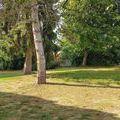 vente maison-villa Le Pont-de-Beauvoisin : Photo 3