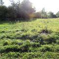vente terrain Saint-Paul-de-Varax : Photo 1